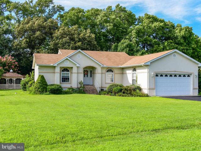35549 Sea Gull Road, SELBYVILLE, DE 19975 (#1005952027) :: Remax Preferred | Scott Kompa Group