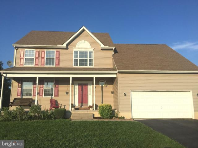 64 Grandview Drive, MAGNOLIA, DE 19962 (#1005966283) :: Colgan Real Estate