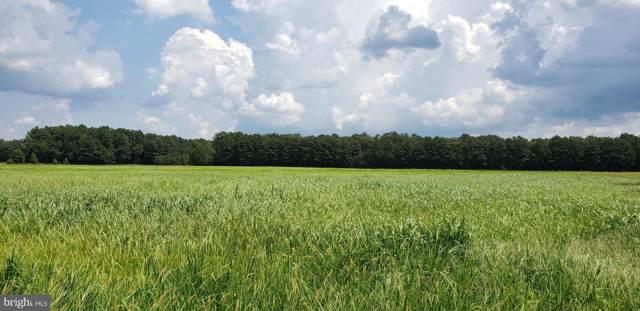 105.67 Acres Deer Meadows Road, GREENWOOD, DE 19950 (#DESU100145) :: CoastLine Realty
