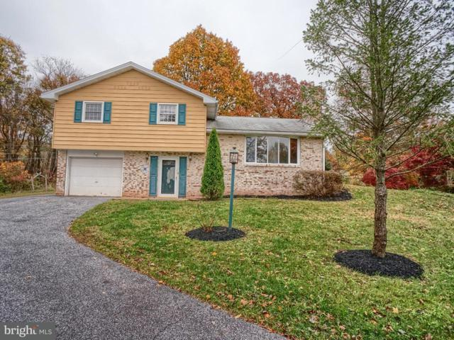 738 Heck Hill Road, LEWISBERRY, PA 17339 (MLS #1000090748) :: Teampete Realty Services, Inc