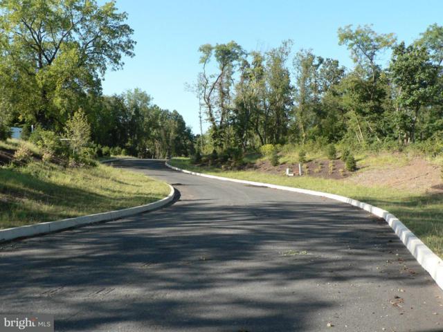 607 Robins View Lane Lot #1, NEW CUMBERLAND, PA 17070 (#1000103358) :: Remax Preferred | Scott Kompa Group