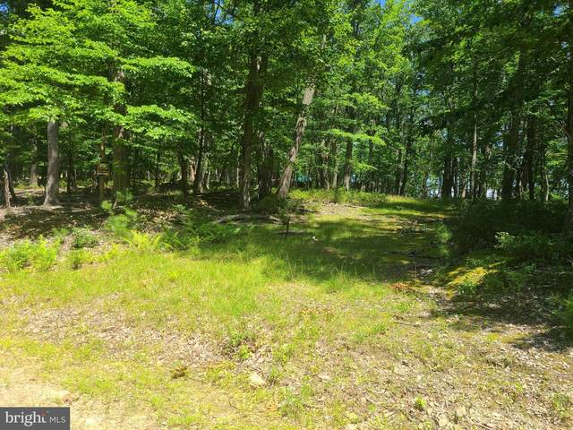 2 Off Route 220 High Knob Road, OLD FIELDS, WV 26845 (#1000236766) :: Advon Group