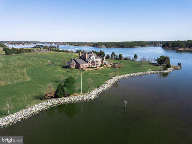 5559 Cassons Neck Road, CAMBRIDGE, MD 21613 (#1000302472) :: RE/MAX Coast and Country