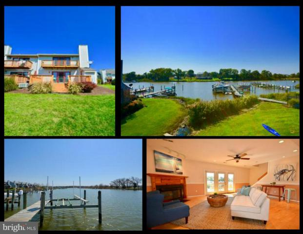 701 Marion Quimby Drive, STEVENSVILLE, MD 21666 (#1000399674) :: The Putnam Group