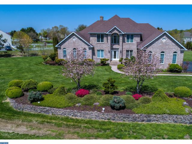 287 Raven Circle, CAMDEN WYOMING, DE 19934 (#1000437546) :: RE/MAX Coast and Country