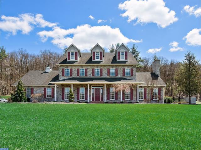 213 Oak Grove Road, PINE GROVE, PA 17963 (#1000438784) :: The Joy Daniels Real Estate Group
