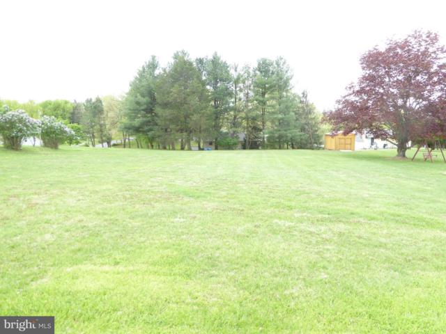 Potomac Avenue, ROMNEY, WV 26757 (#1000453030) :: Homes to Heart Group