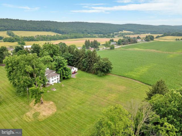 3872 Cold Storage Road, NEW BLOOMFIELD, PA 17068 (#1000454268) :: The Heather Neidlinger Team With Berkshire Hathaway HomeServices Homesale Realty