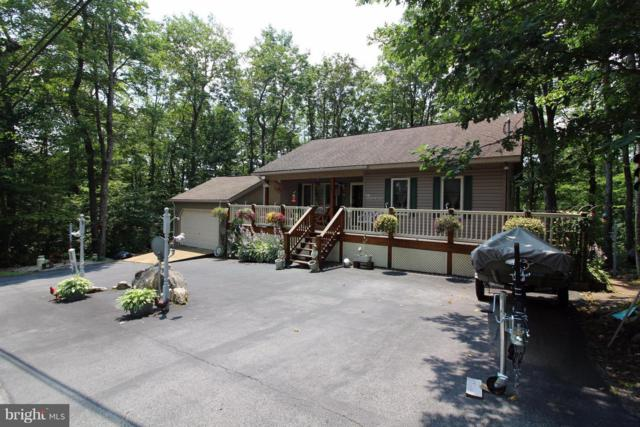 307 Rhododendron Drive, TERRA ALTA, WV 26764 (#1000454568) :: Bic DeCaro & Associates