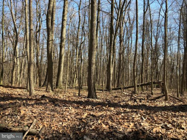 485 Old Mine Road Lot 1, LEBANON, PA 17042 (#1000472292) :: The Heather Neidlinger Team With Berkshire Hathaway HomeServices Homesale Realty