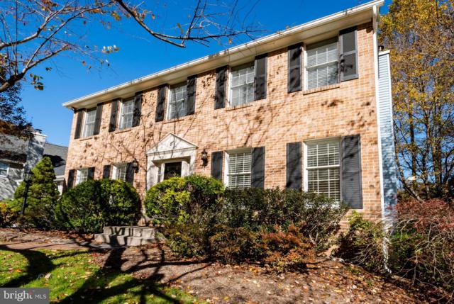 8 Gray Squirrel Court, LUTHERVILLE TIMONIUM, MD 21093 (#1001189108) :: The Gus Anthony Team