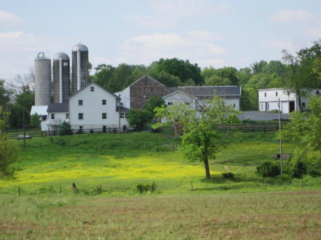 337 Cider Press Road, MANHEIM, PA 17545 (#1001540902) :: The Joy Daniels Real Estate Group