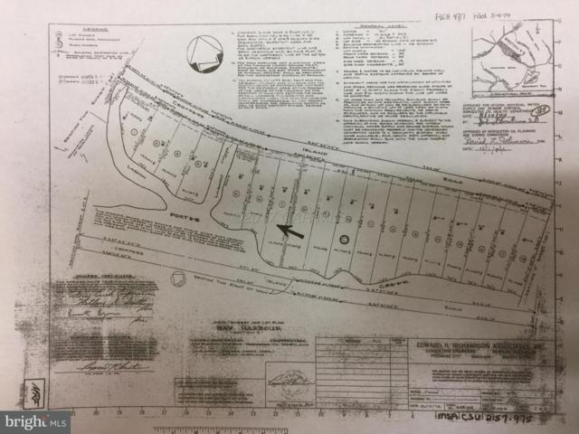 LOT #7 Croppers Island Road, NEWARK, MD 21841 (#1001558864) :: RE/MAX Coast and Country
