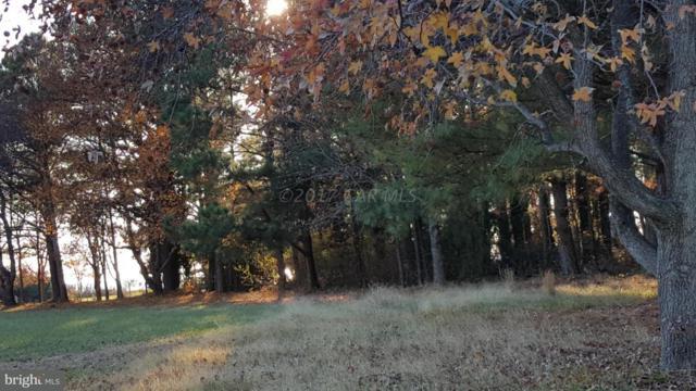 0 Chesapeake Drive Lot #23, NANTICOKE, MD 21840 (#1001559318) :: ExecuHome Realty