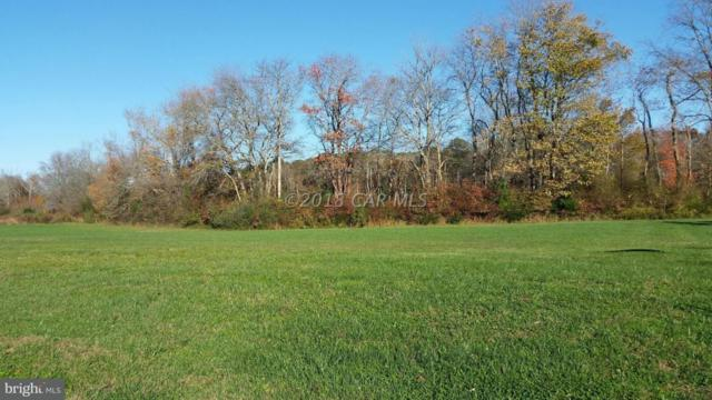 Lot 34 Timberlake Court, OCEAN CITY, MD 21842 (#1001560536) :: Brandon Brittingham's Team