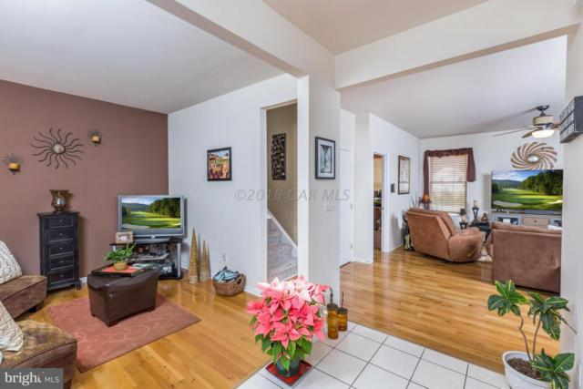 507 Dueling Way, BERLIN, MD 21811 (#1001561058) :: The Windrow Group