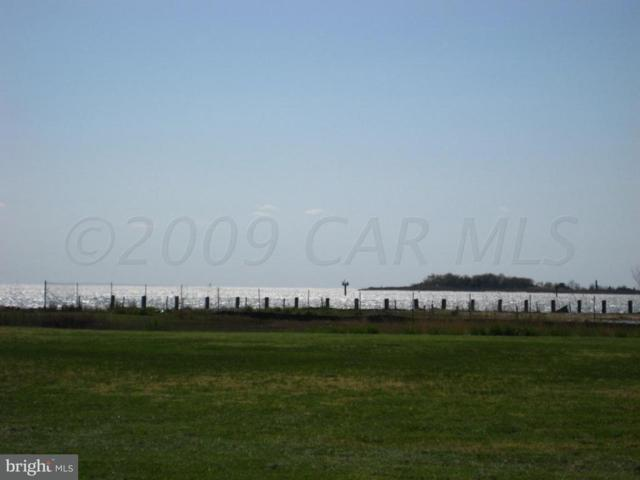 1 Hammock Drive, CRISFIELD, MD 21817 (#1001561202) :: RE/MAX Coast and Country