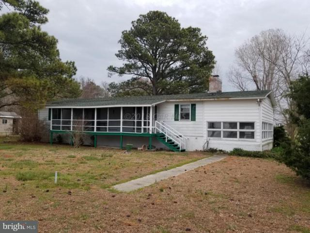 23124 Soundside Estates Road, DEAL ISLAND, MD 21821 (#1001561946) :: Condominium Realty, LTD