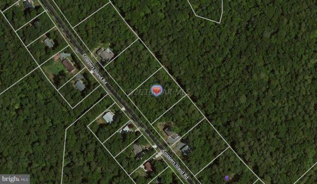 Lot 12 Cropper Island Road, NEWARK, MD 21841 (#1001562732) :: HergGroup Horizon