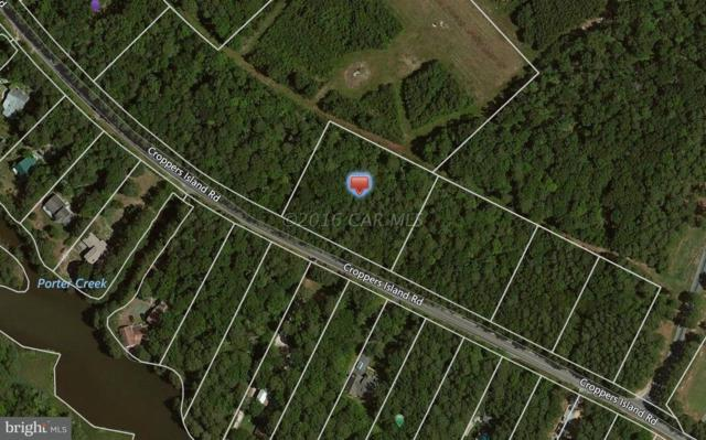 Lot 16 Cropper Island Road, NEWARK, MD 21841 (#1001562742) :: HergGroup Horizon