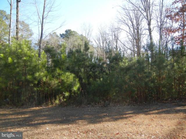 Lot 1 Pristine Place, PARSONSBURG, MD 21849 (#1001562758) :: The Windrow Group