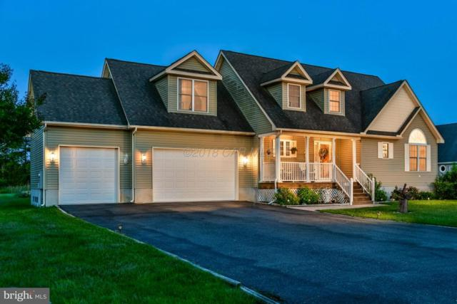 13328 Cove Landing Road, BISHOPVILLE, MD 21813 (#1001563544) :: RE/MAX Coast and Country