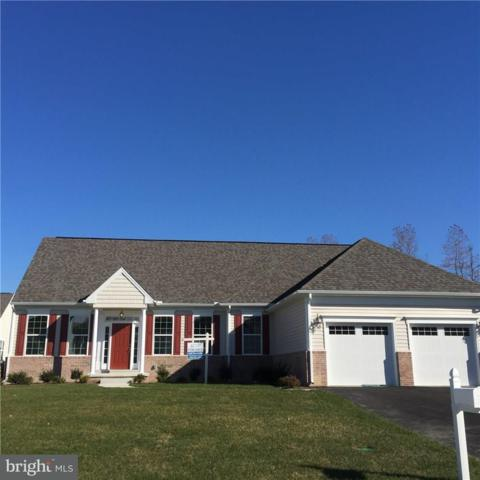 31888 Two Ponds Road, SELBYVILLE, DE 19975 (#1001566020) :: Ramus Realty Group