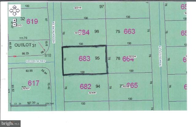 Lot 95 Hidden Acres Drive, FRANKFORD, DE 19945 (#1001566228) :: Barrows and Associates