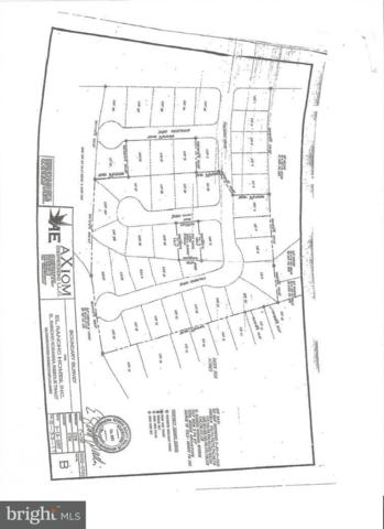 12 Lots Palomino Drive, SELBYVILLE, DE 19975 (#1001566446) :: The Windrow Group