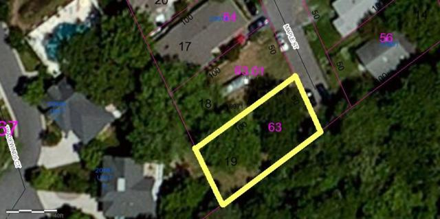 Lot 19 Truitts Park Maple Street #19, REHOBOTH BEACH, DE 19971 (#1001566580) :: The Windrow Group
