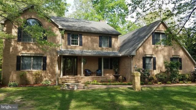 25 Woodland Drive, SEAFORD, DE 19973 (#1001566900) :: The Windrow Group