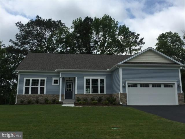 38541 Blue Hen Drive, SELBYVILLE, DE 19975 (#1001567012) :: The Windrow Group