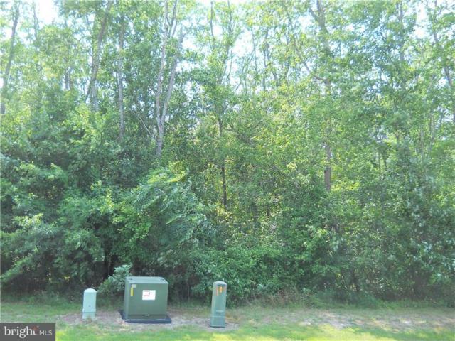 47 Beacon Circle #41, MILLSBORO, DE 19966 (#1001567624) :: RE/MAX Coast and Country