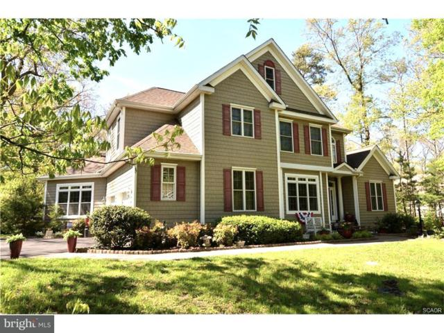 22771 Red Bay Lane, MILTON, DE 19968 (#1001567720) :: RE/MAX Coast and Country