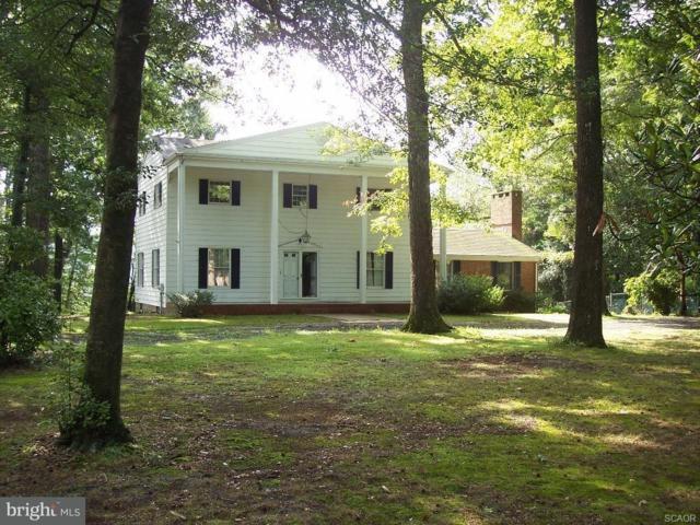 32733 Meadow Branch Drive, LAUREL, DE 19956 (#1001568002) :: Barrows and Associates