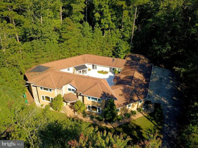 4 Bay Oak Drive, LEWES, DE 19958 (#1001568500) :: The Windrow Group