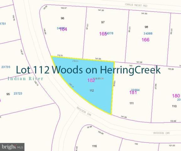 Lot 112 Woods Drive, LEWES, DE 19958 (#1001568964) :: The Allison Stine Team