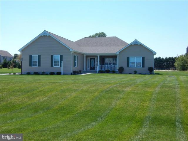 16567 Sweetwater Drive, MILTON, DE 19968 (#1001569598) :: The Windrow Group