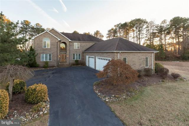 141 Creekside Drive, DAGSBORO, DE 19939 (#1001569758) :: The Windrow Group