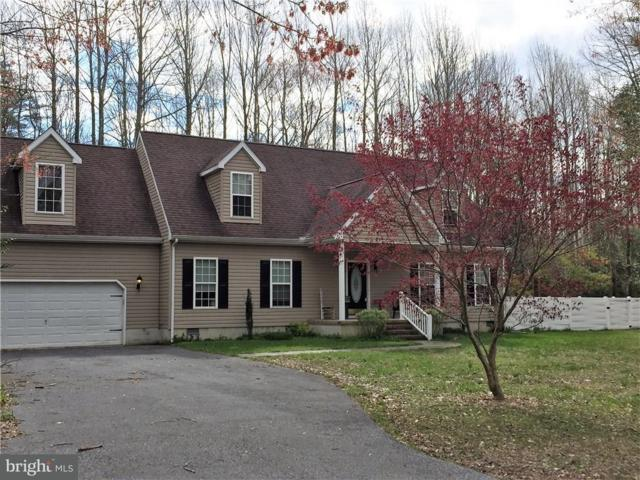 24 Falcon Crest Drive, HARBESON, DE 19951 (#1001569938) :: The Windrow Group