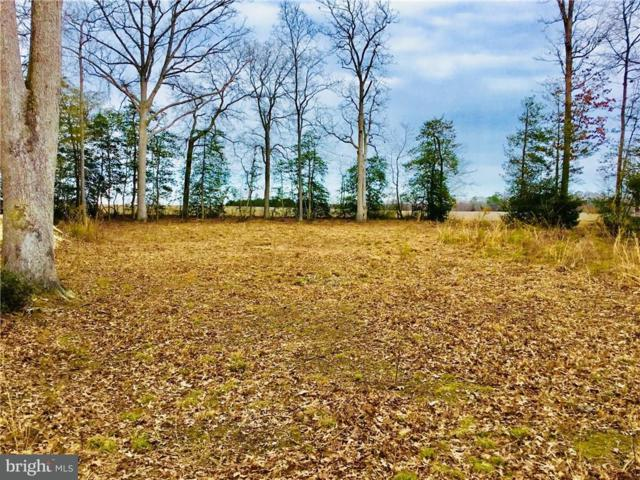 Lot 19 Holly Oak Lane, LEWES, DE 19958 (#1001570774) :: RE/MAX Coast and Country