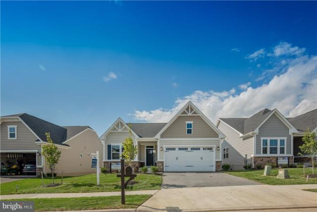 27580 Shipwreck #115, SELBYVILLE, DE 19975 (#1001572018) :: The Windrow Group