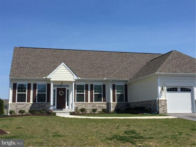 38543 Blue Hen Drive, SELBYVILLE, DE 19975 (#1001572626) :: The Windrow Group