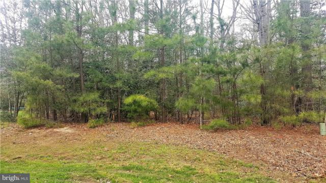 Lot 16 Red Fox Lane #16, MILTON, DE 19968 (#1001573010) :: RE/MAX Coast and Country