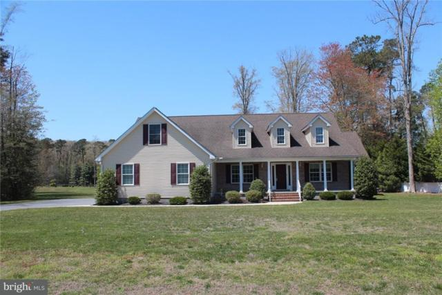 37068 Cygnet Drive, SELBYVILLE, DE 19975 (#1001573566) :: Remax Preferred | Scott Kompa Group