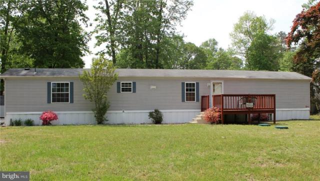 32291 Hidden Acre Drive, FRANKFORD, DE 19945 (#1001573748) :: Barrows and Associates