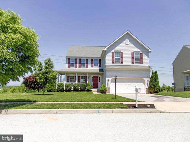 131 Evergreen Circle, DILLSBURG, PA 17019 (#1001645222) :: The Joy Daniels Real Estate Group