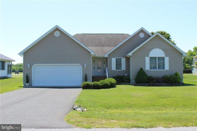 38454 Milda Drive, OCEAN VIEW, DE 19970 (#1001648542) :: The Windrow Group