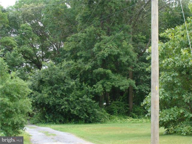 000 E.Side Black Top Rd, MILLSBORO, DE 19966 (#1001648518) :: Brandon Brittingham's Team