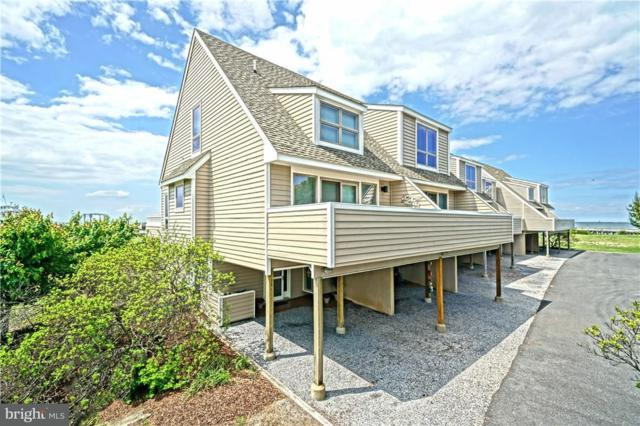 53 Cape Henlopen Drive #14, LEWES, DE 19958 (#1001667202) :: RE/MAX Coast and Country